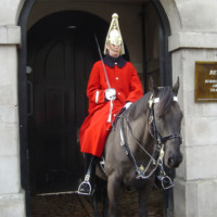 Guard on horseback in London (Landscape)