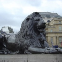 Lion in front of the British Museum London