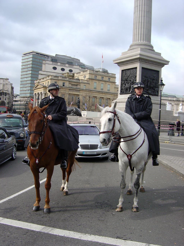 Two Bobbies on Horseback in London | WebPix Photo-Blog